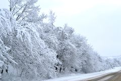 Winter wonderland. Snowy way to magic lapland. Hello winter! Snowfall on road. Nature and trees covered with snow. Winter wonderland. Snowy way to magic lapland royalty free stock photo