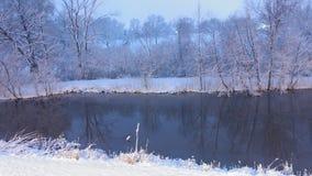 Winter Wonderland. Walking in a winter wonderland! No filter Stock Photo