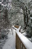 Winter Wonderland Walkway. A snow covered walkway amidst a winter wonderland Stock Photo