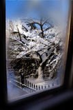 Winter wonderland window view. Stock Images