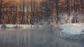 Winter wonderland. Winter landscape. Fog over forest river in winter stock video