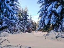 Winter Wonderland. Germany Royalty Free Stock Image