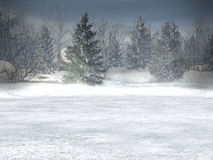Winter wonderland, xmas Royalty Free Stock Photos