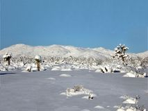 Winter wonderland. Yucca Valley, California Stock Image