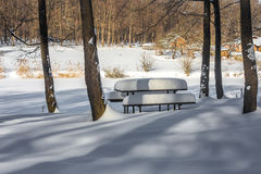 Winter wooden bench Royalty Free Stock Photography