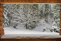 Winter and wooden frame. Snow fresh stock photography