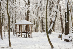 Winter. Wooden house in cold forest Royalty Free Stock Photography