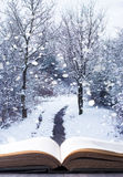 Winter Woodland Book stock images