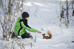 Winter in the woods in the snow sat a little boy feeds the squir Royalty Free Stock Photo