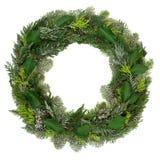 Winter Wreath Decoration with juniper, fir, spruce and cedar. Winter and Christmas wreath decoration with snow covered natural juniper fir, blue spruce, cedar Stock Photos