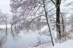Winter-Wunder-Land II Lizenzfreies Stockfoto