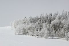 Winter in Wyoming. Snowy Landscape on the Wyoming-Colorado Border. Winter Royalty Free Stock Photos