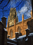 Winter in Yale. Tower of Yale University in a winter day Stock Photo