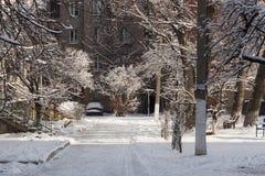 Winter yard Stock Photos