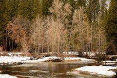 Winter in Yosemite Valley Stock Image