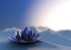 Winter zen flower Royalty Free Stock Images