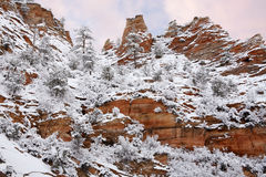 Winter At Zion Stock Images