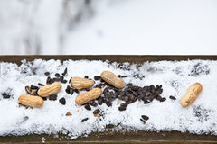 Winter-Zufuhr Stockfotografie