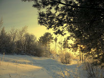 Winterabend Lizenzfreies Stockbild