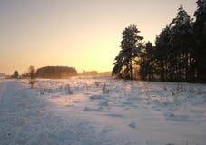 Winterabend Stockfotografie