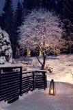 Winterabend im schneebedeckten Garten Lizenzfreies Stockfoto