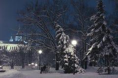Winterabend im städtischen Garten Lizenzfreie Stockfotografie