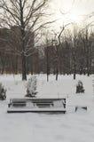 Winterabendlandschaft im Park Sonnenuntergang Eine leere Bank bedeckt mit Schnee Lizenzfreie Stockbilder