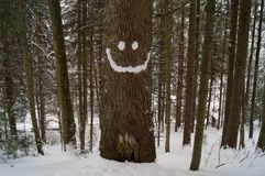 Winterabenteuer Lächeln karpaten ukraine lizenzfreie stockfotos