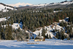 Winterabhang Stockfoto
