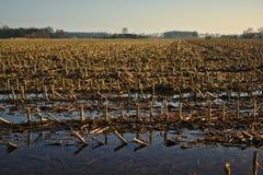 Winterackerland nach dem Regen Lizenzfreies Stockbild