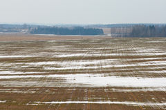 Winteranfang auf dem Feld Lizenzfreie Stockfotografie