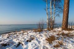 Winteransicht Lizenzfreie Stockfotografie