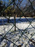 Winteransicht durch den Zaun Lizenzfreies Stockfoto