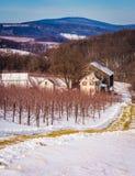 Winteransicht eines Bauernhofes und der entfernten Berge in ländlichen Adams Coun Stockbilder
