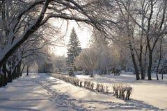 Winteransicht ist Stockbilder