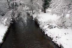 Winteransicht von Fluss, von Schnee und von Wald Stockbild