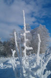 Winteraufbau 2 stockbild