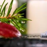 Winterbadekurortkonzept von immergrünen Niederlassungen mit Tropfen, Kerzen an Stockfotografie