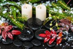 Winterbadekurortstillleben des Rotes verlässt mit Tropfen, Schnee, Immergrün Stockfoto