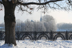 Winterbaum-Zaunhaube Lizenzfreies Stockfoto