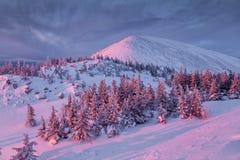 Winterberg bei Sonnenaufgang Lizenzfreie Stockfotografie