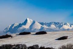 Winterberg Krivan Poprad Slowakei Lizenzfreie Stockfotografie