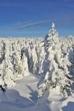 Winterberge Stockfotos
