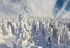 Winterberge Stockbilder