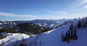 Winterberge und forrest stock footage