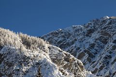 Winterberglandschaft mit schneebedeckten Bäumen Lizenzfreie Stockfotografie