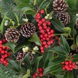 Winterberry holly obrazy stock