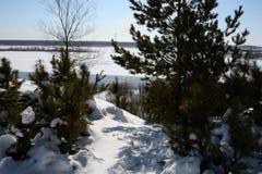 Winterbeschaffenheit von Sibirien stockfoto