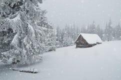Winterblizzard Stockfotos