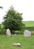 Winterbourne Abbas Nine Stones Royaltyfri Bild